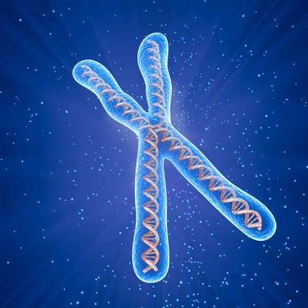 Cromosoma concepto de molécula, Ilustración médica precisa en 3D