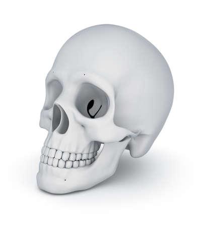 dying: White skull over white, 3D illustration Stock Photo
