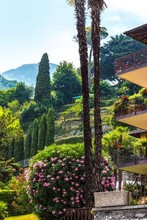 Cascade green lawn in a colorful landscaped formal garden. Beautiful Italian Garden. Stock Photo