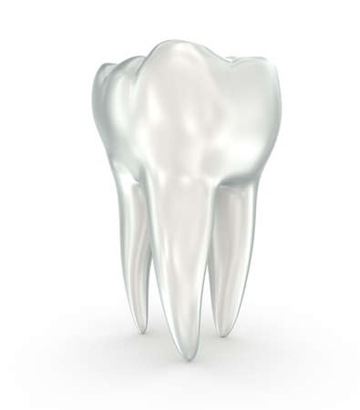 Tooth Medically accurate 3D illustration white style