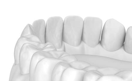 Mouth gum and teeth. White stye 3D illustration