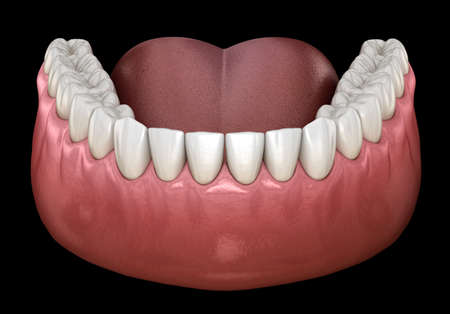 Mandibular human gum and teeth. Medically accurate tooth 3D illustration Standard-Bild - 123152399