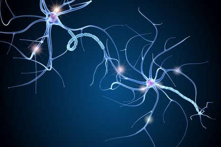 Nerve cell anatomy in details. 3D illustration