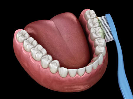 Toothbrush cleaning teeth. Medically accurate 3D illustration of oral hygiene. Stock Photo