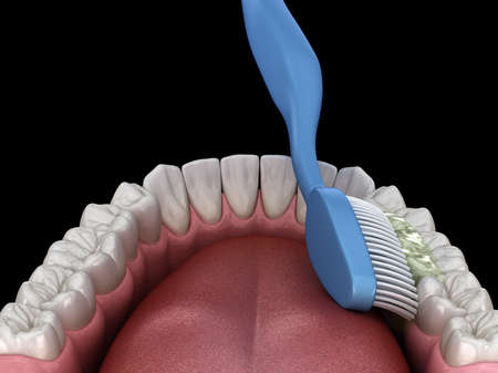 Toothbrush cleaning teeth. Medically accurate 3D illustration of oral hygiene. Imagens
