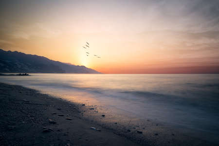 A group of seagulls emerge behind the mountains where the sun rises on the coast Archivio Fotografico