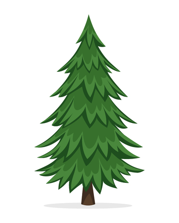 christmas tree: Cartoon Pine Tree Illustration