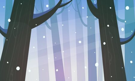 winter scenery: Winter Forest