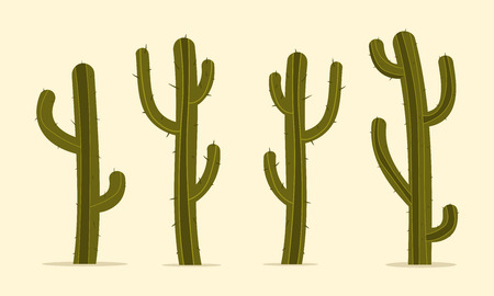 dry flower: Cartoon Cactus Set