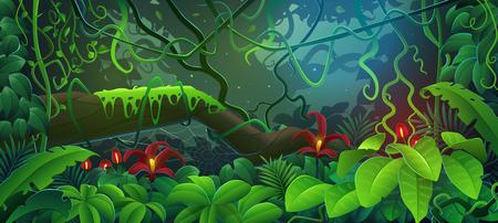 The jungle. Tropical rainforest jungle cartoon vector illustration.