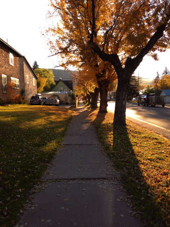 Sidewalk in the morning Stock Photo