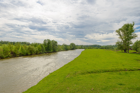 summer landscape with a river, green trees and fields