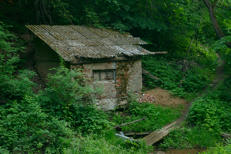 Abandoned brick hut in the ravine of a forest on a summer day