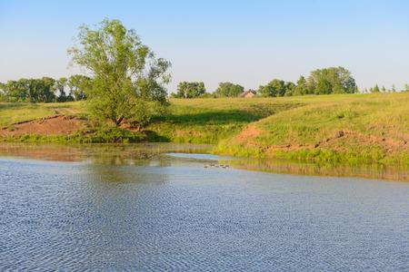 Summer evening landscape with a pond and ducks Zdjęcie Seryjne