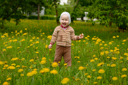 A small child stands in the meadow with dandelions and laughs