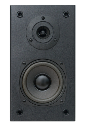 front side of an acoustic speaker with two speakers