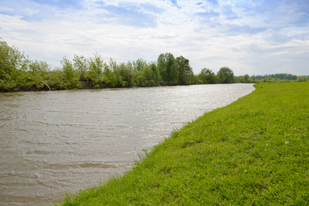 Summer landscape with a river and green shores