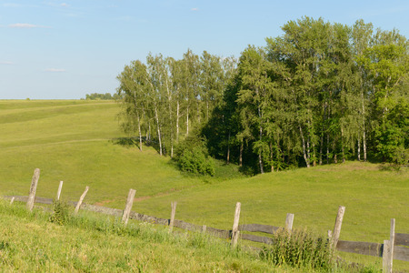 summer landscape with green forest, field and old wooden fence