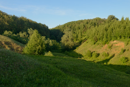 Summer evening landscape with green forest on the hillsides and blue sky
