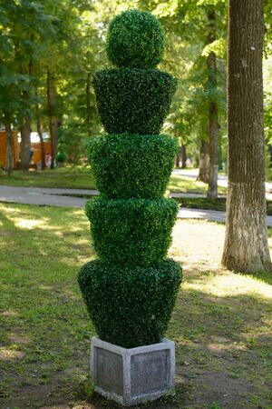 Sculpture of a green plant in the park