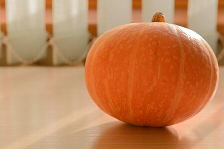 bright orange pumpkin on the kitchen table Zdjęcie Seryjne
