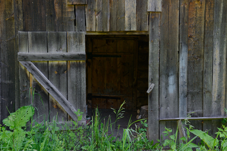 open old wooden doors on an abandoned wooden wall Publikacyjne