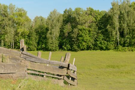 Old wooden fence on the slope of a ravine in the background of the forest