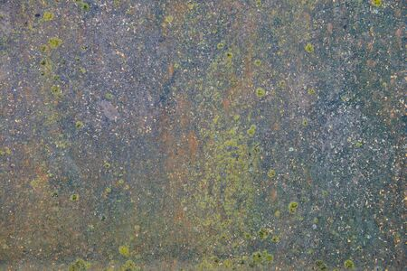 The surface of the old metal sheet with rust and lichen