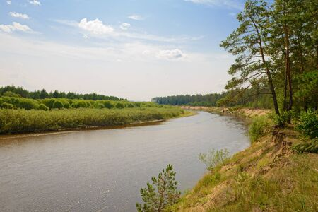 Summer landscape with meandering river and trees on the banks