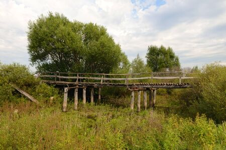 Old decaying wooden bridge among lush vegetation