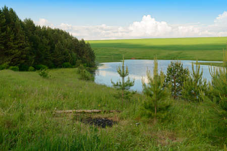 Summer landscape with a lake, green meadow and forest on the shore Banco de Imagens