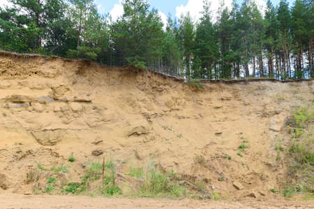 Steep sandy cliff with trees on top