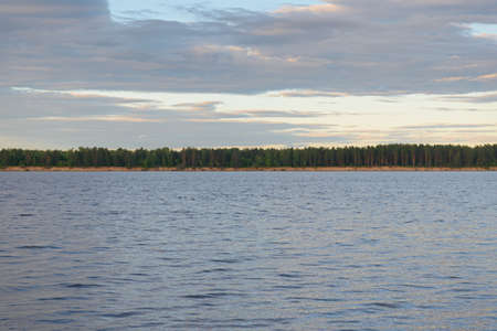 Evening summer landscape with the opposite bank of the river with a forest