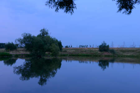 Reflection of trees on the lake shore on a summer evening