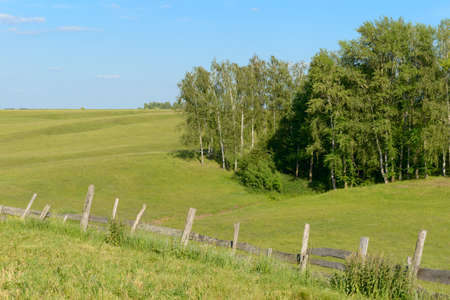 Summer landscape with ravine, forest and old wooden fence