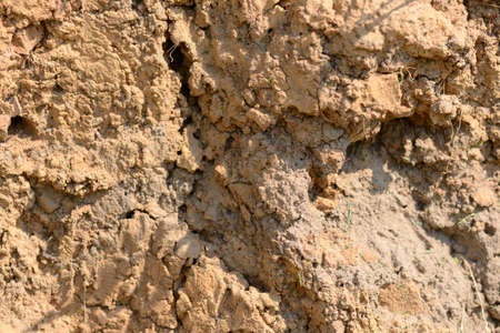 The texture of the cut of the earth with a high content of clay