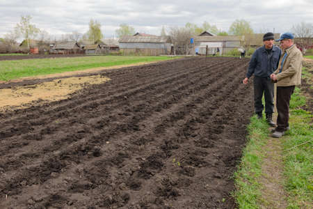 May 6, 2017: Planting potatoes in a plowed field by hand. Chuvashia. Russia. 新聞圖片