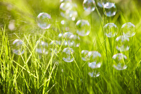 background  grass: Nature. Background. Grass with soap bubbles.