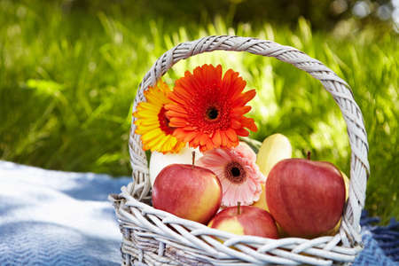 Picnic in the garden. Flowers and fruits. photo