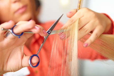 human hair: Hair salon. Women`s haircut. Cutting.