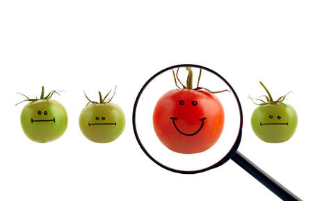 The best concept with painted tomatoes. Clipping path included. photo