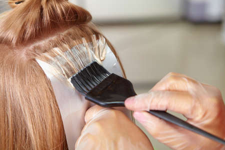 salon hair: Hair salon. Coloring. Stock Photo