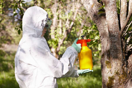 insecticide: Ecology and environmental pollution. Insecticide.