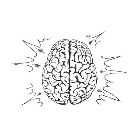 concept of creativity with human brain. Vector
