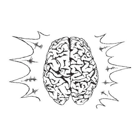 Concept of creativity with vector human brain. Vector