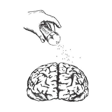 poignant: Concept of creativity with vector human brain.