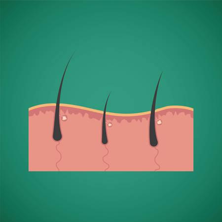 nutrients: Cuidado del cabello y los nutrientes de crecimiento vector concepto
