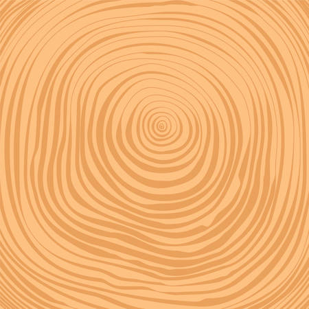rings on a tree: Vector crosscut timber tree rings background Illustration