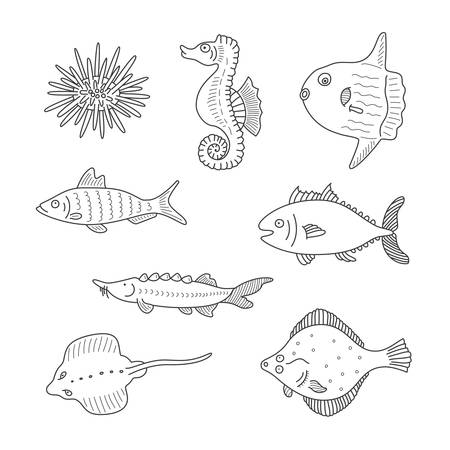 flounder: Set of monochrome vector doodle fishes and sea dwellers isolated on white background Illustration