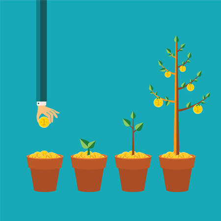 plants growing: money tree growth concept in flat style